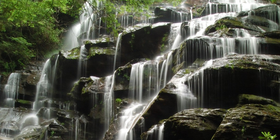 Ch8se Ch. 31 - Yellow Branch Falls, SC With The Bradley's