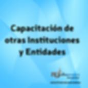 capacitación_de_otras_instituciones.png