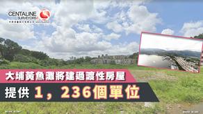 大埔黃魚灘將建過渡性房屋 提供1,236個單位