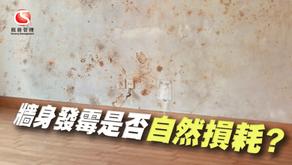 牆身發霉是否自然損耗?