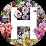 Logo H 01.png