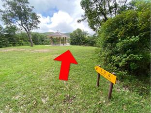 深屈道涼亭 Sham Wat Road Lookout Point