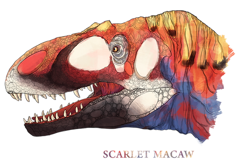 "Allosaurus, ""Scarlet Macaw"""