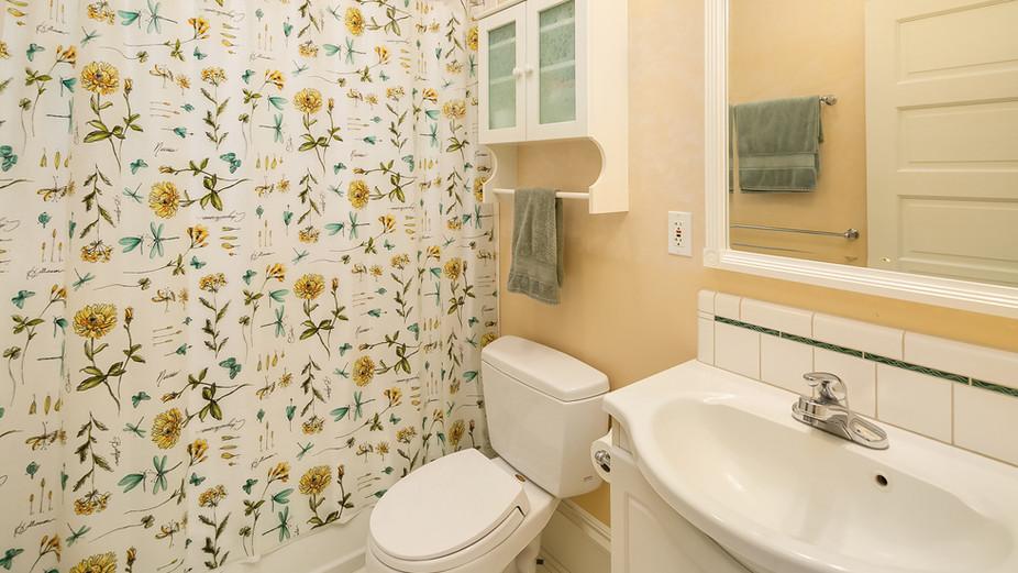 web_29-bathroom-on-lower-leveljpg