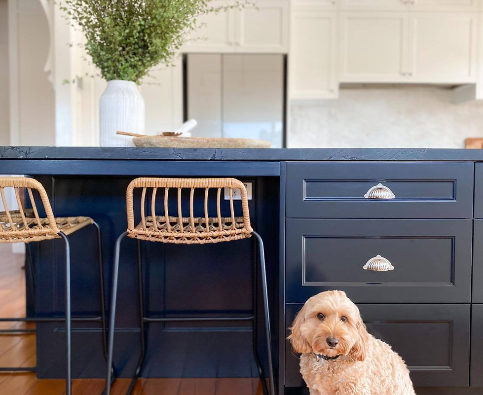 farmhouse kitchen with dog.jpg