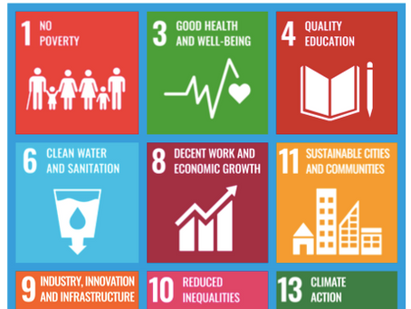 UN Sustainability Development Goals