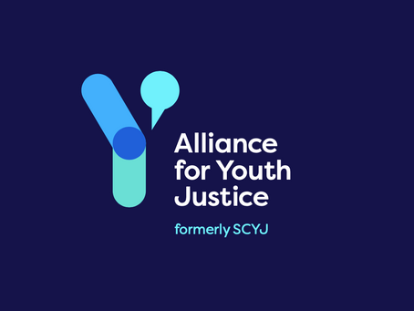Alliance for Youth Justice in conversation with The Skill Mill