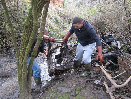 'Newcastle young offenders pay back society by environmental graft'