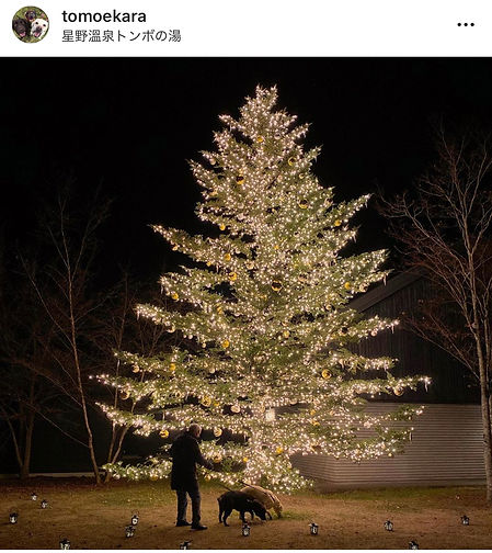 tomoekara_2020huyumonogatari.jpg