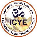 logo.ICYE.jpg