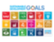 Social Impact Isarel supports the SDGs