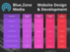 Website Design .png