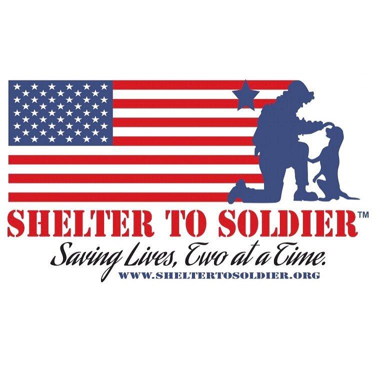 Shelter logo 2