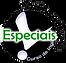 Cursos Especiais.png