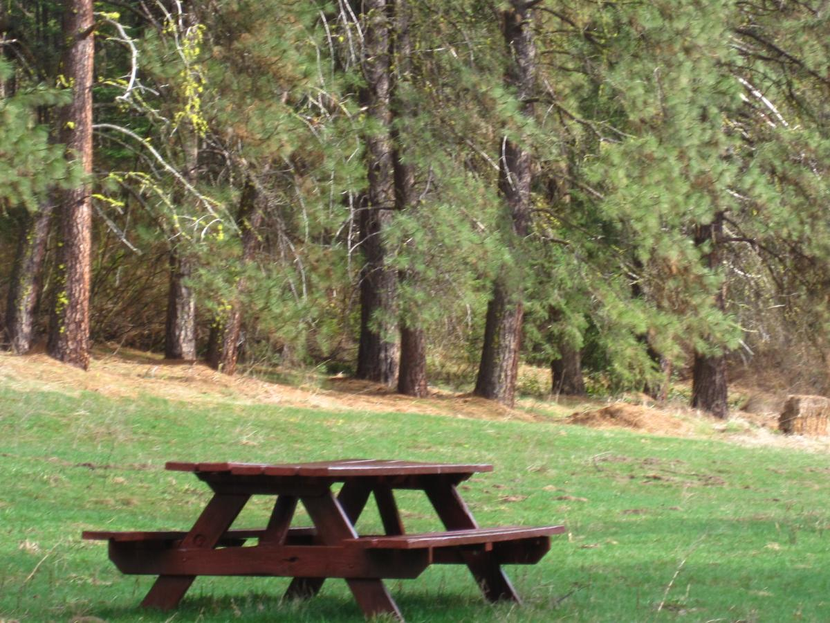 Picnic table in Barn Canyon