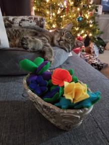 Plushie Succulents