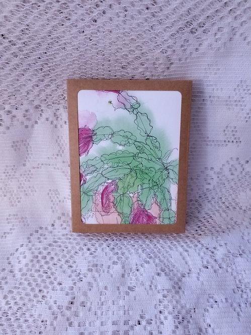 Holiday Box Set - Christmas Cactus