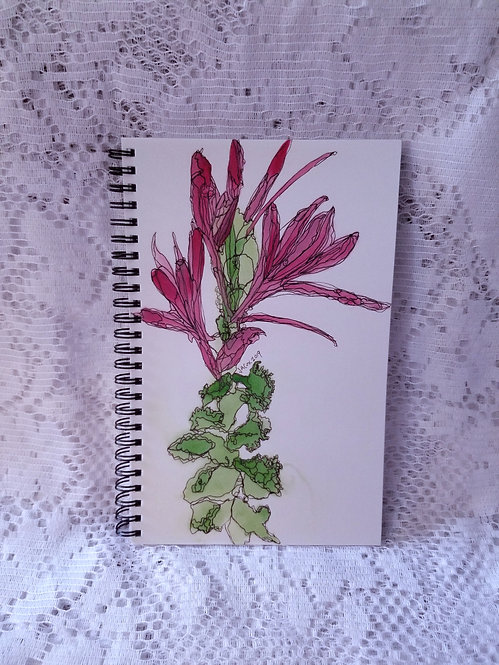 Notebook - Cleome