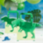 samantha marando okey dokey design illustrator designer illustration product packaging brand ginger ray gingerray dinosaur roar party bag paper trex t-rex green party decorations
