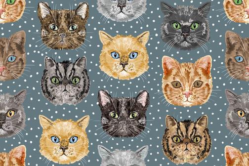 Cat wall paper.jpg