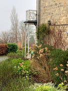 The side border in winter