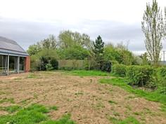 Rear garden before build