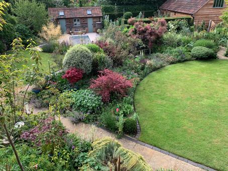 My garden at Brow Cottage