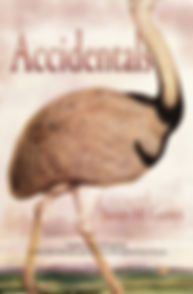 ACCIDENTALS cover only 08.20.19.jpg