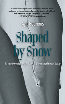 shaped_by_snow_11.12.jpg