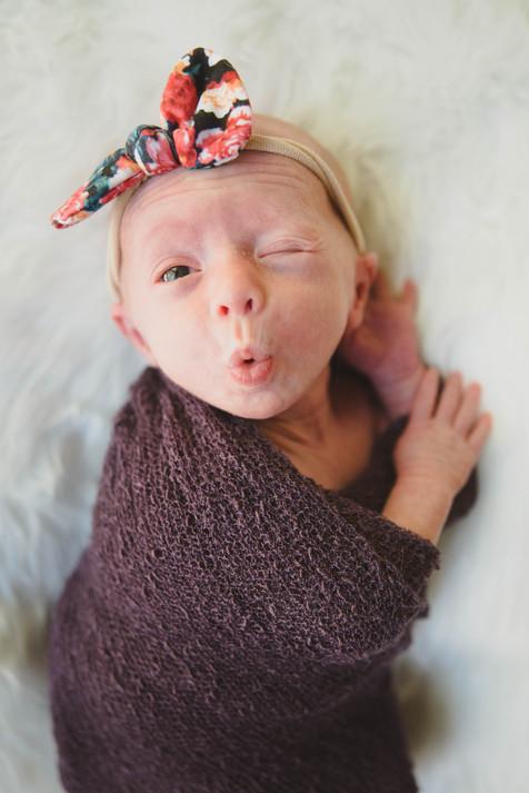 Michigan Newborn Travel Photographer