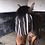 Thumbnail: No Head-collar Zebra fly fringe