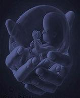 A unborn.jpg