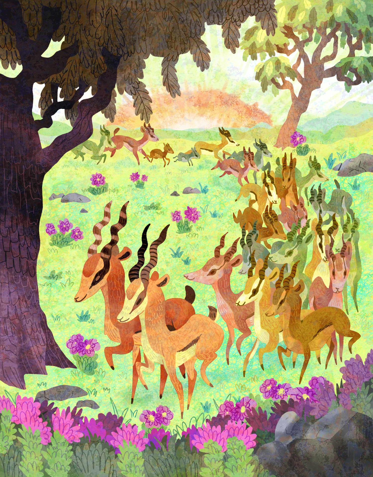 Springbok Tribe
