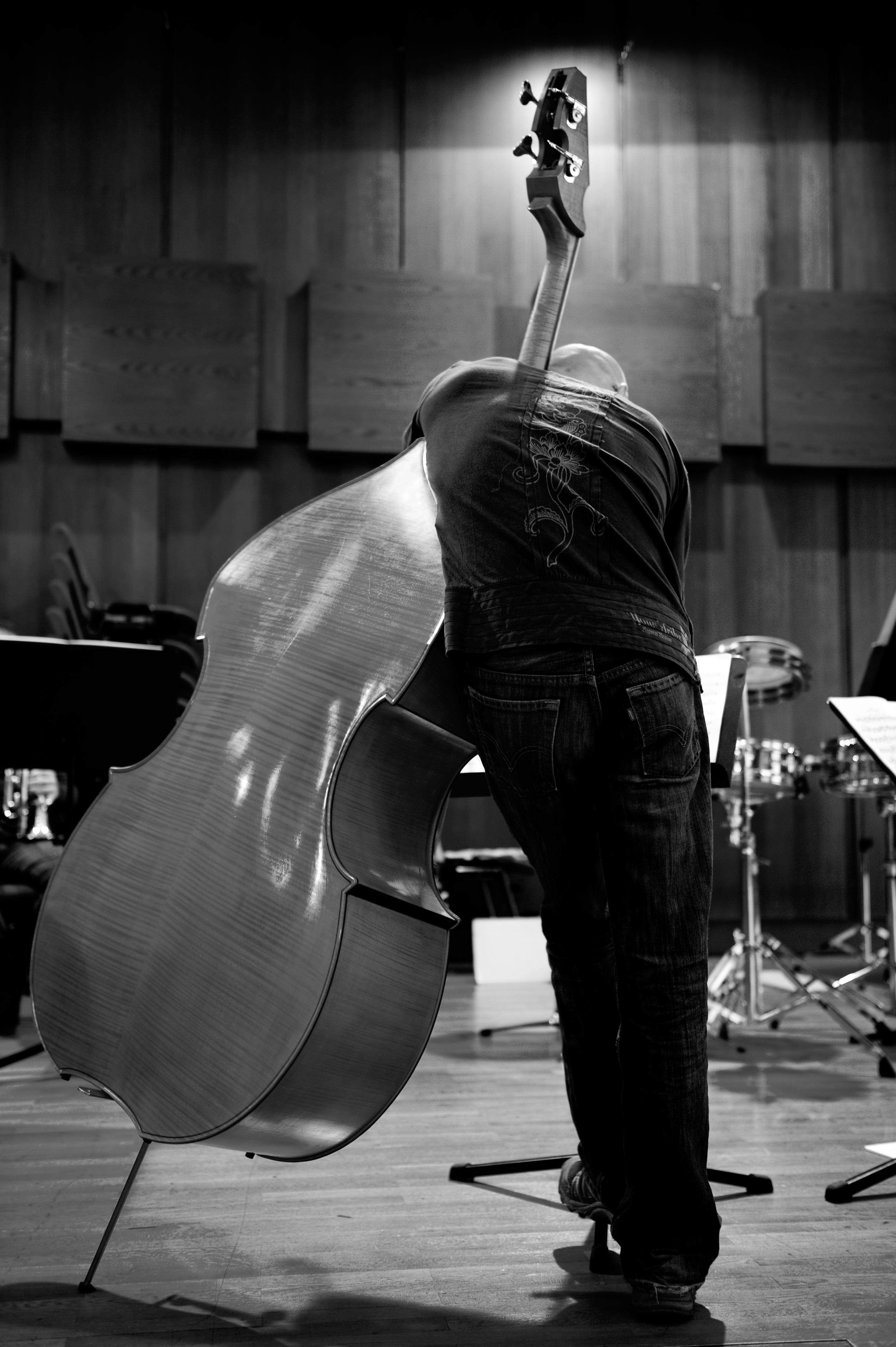 Sylvain Le Provost Musicien