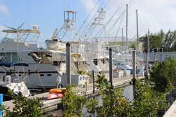 Port Largo Fisherman
