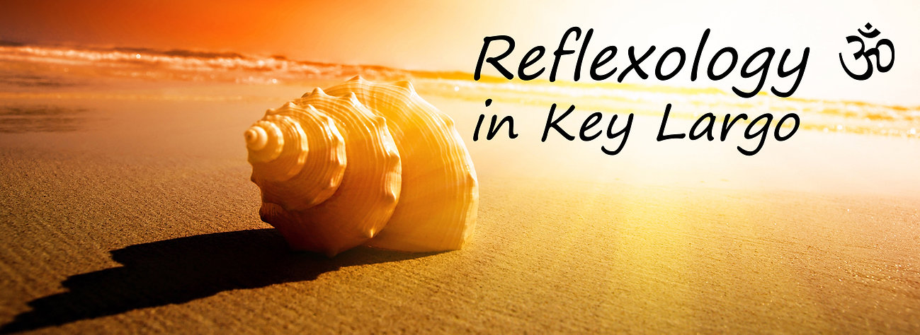 Reflexology conch Key Largo 1.jpg