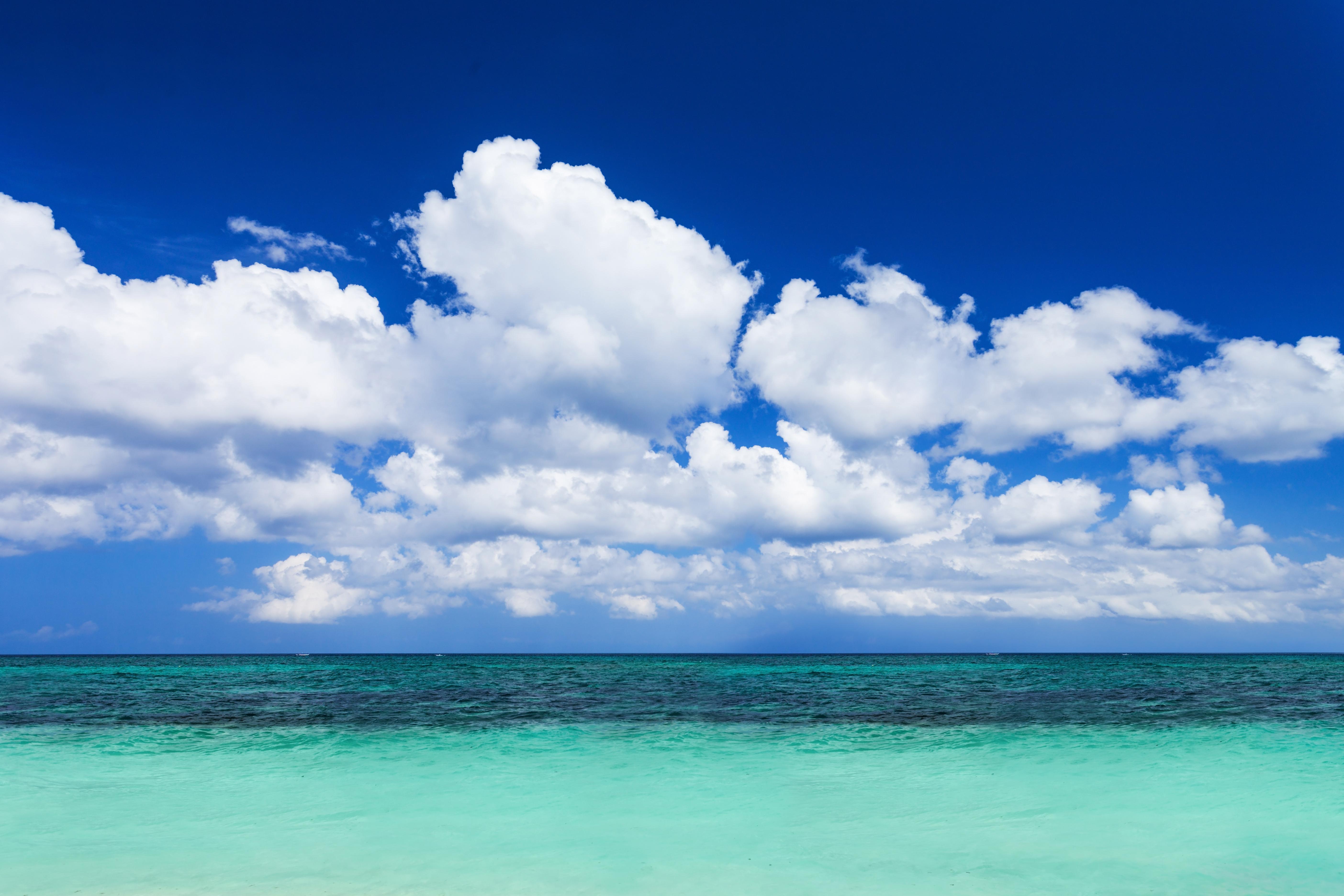 beach scene in the florida keys
