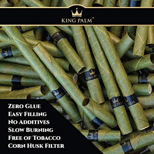 King Palms.jpg