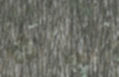 bark_material_03 (1).png