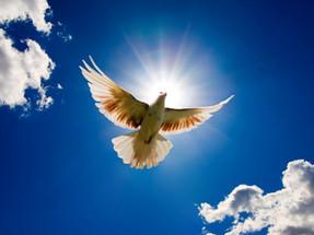 Transformation oder die bedingungslose Hingabe zur Göttlichen Essenz