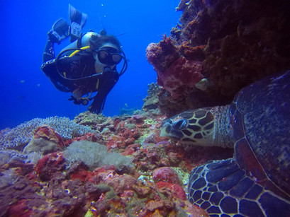 Scuba diving - another form of meditation for me.