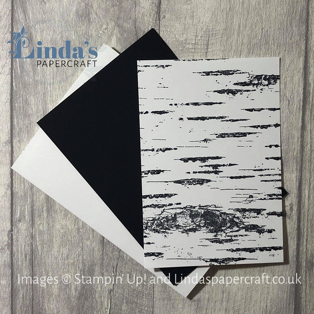 Lay out of the Basic White card base, Basic Black layer and the Birch background stamped in black on white card