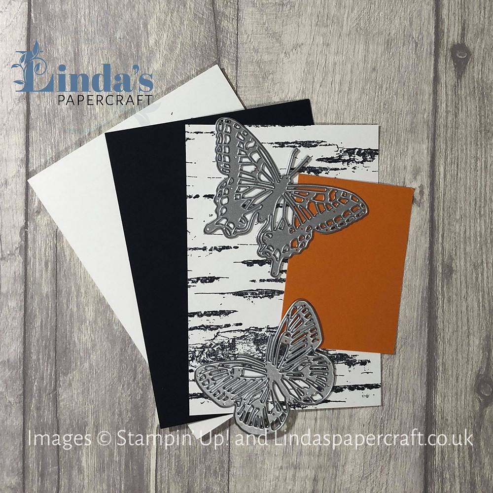 Now I have added some butterfly dies and a swatch of Pumpkin Pie card