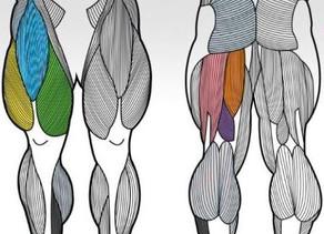 Legs - Bodybuilder Workout