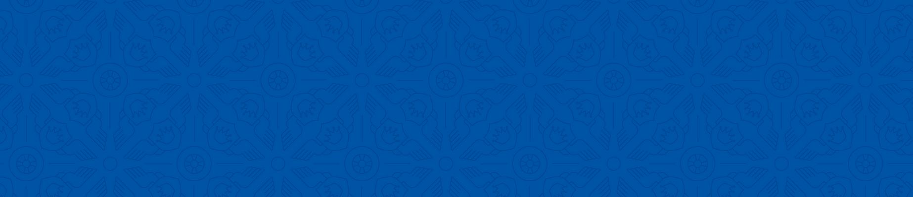 KV_Homepage_Pattern-09.png