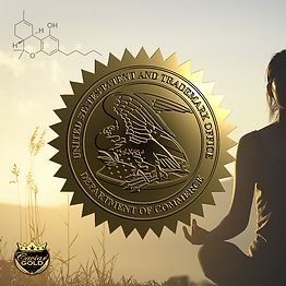 cavi patent yoga cannabis v2 DSC00431.pn