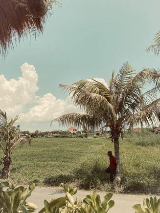 Bali Film