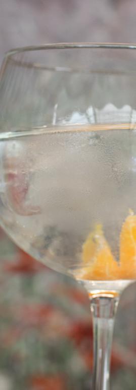 gin tonic valenciano de mandarina