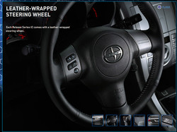 scion_tcrs4_steering
