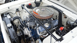 Shelby 289 Engine